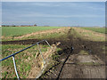 TL4984 : Track across Byall Fen by Hugh Venables