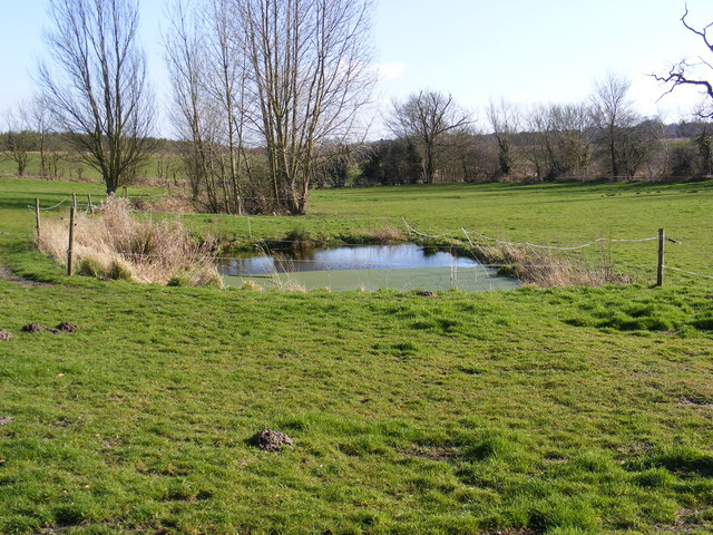 Pond near All Saints Church, Ellough
