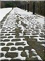 SE2833 : Paving stones in the snow : Week 5