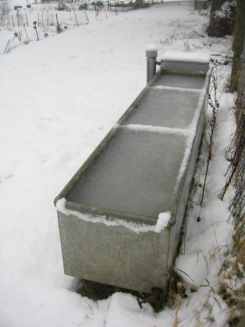 Frozen Water Trough 169 Logomachy Geograph Britain And