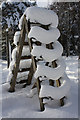 NH8922 : Snowy Stile : Week 6