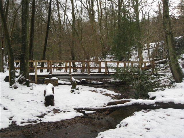 Footbridge in Highcomb Bottom