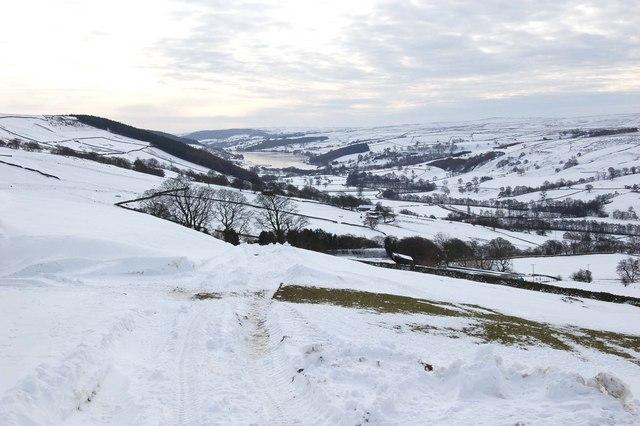 Farm Track to High Lofthouse Farm