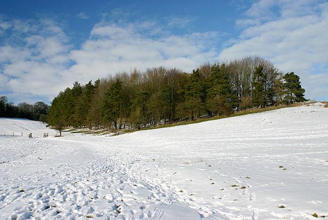 Snow near Widford