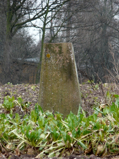 Trig. Point on Hunger Hill