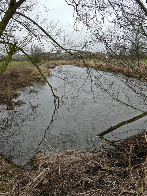 River Blithe between Nethertown and Hamstall Ridware