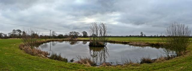 Pond near Hamstall Ridware