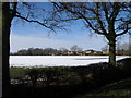 TL1489 : Folksworth between the Oak trees by Michael Trolove