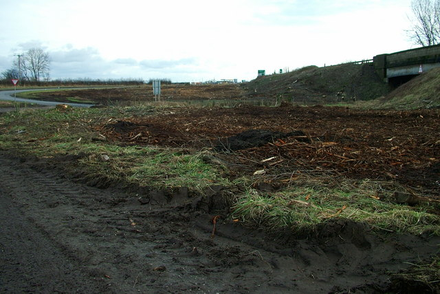 Cleared Ground