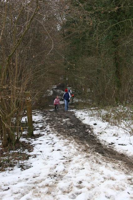 Family Orienteering