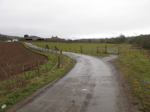 Upper Carbarns