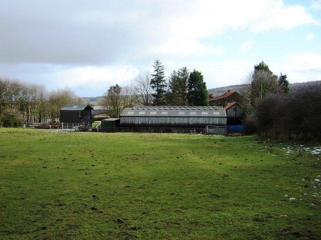 Island  Farm  from  paddock