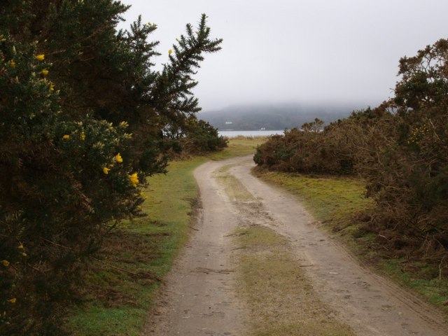 Track to Carradale Bay