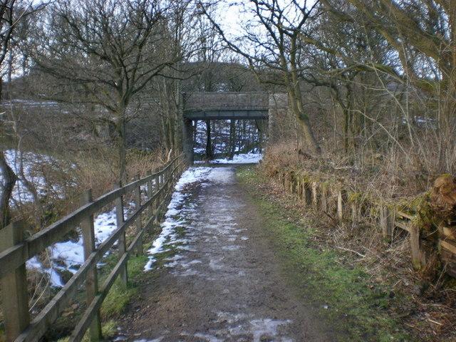 Knarr Lane Bridge over The Delph Donkey