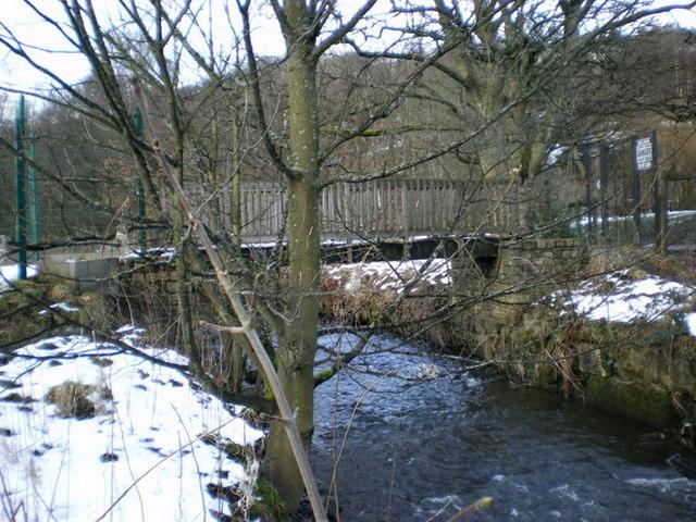 Izzy Bridge