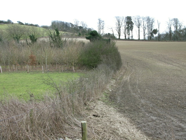 Fields in the Alkham Valley