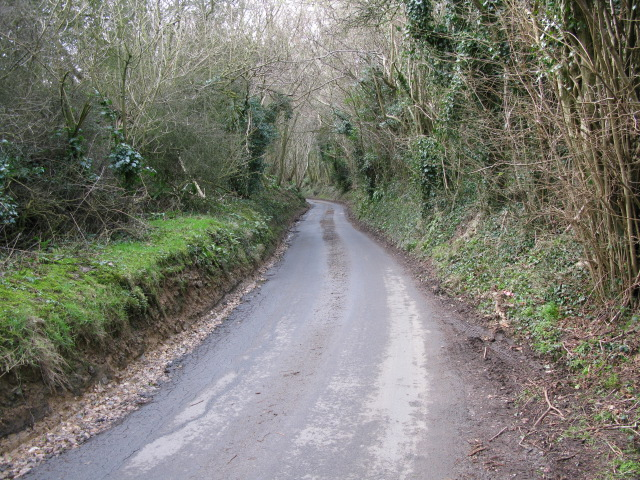 View along Cauldham Lane near Hockley Sole