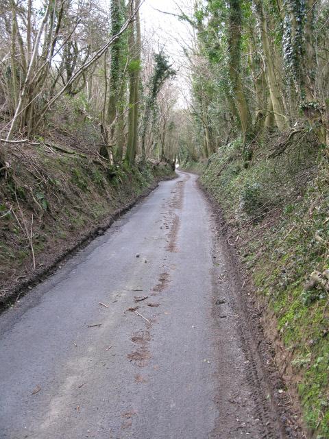 Cauldham lane leading to Hockley Sole