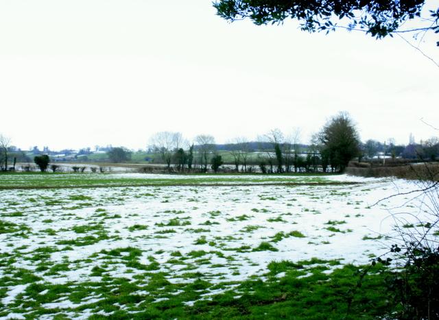 2009 : South from Ridgeway Lane