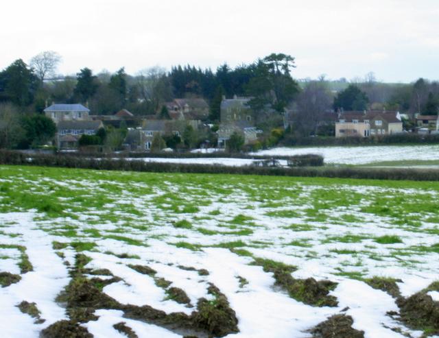 2009 : Pasture off Ridgeway Lane