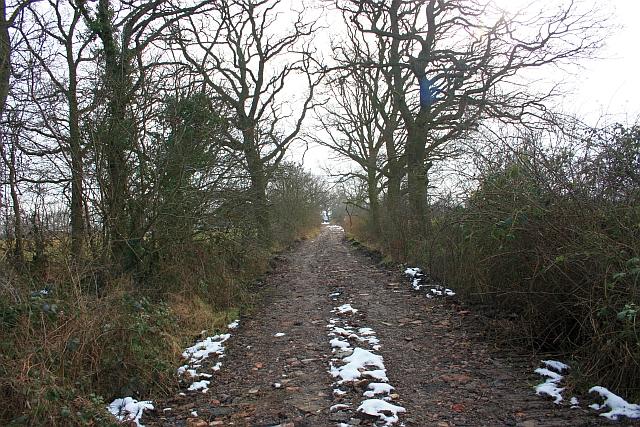 Track to Common Farm