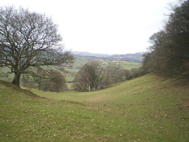 On the hillside below Allt Tair Ffynnon