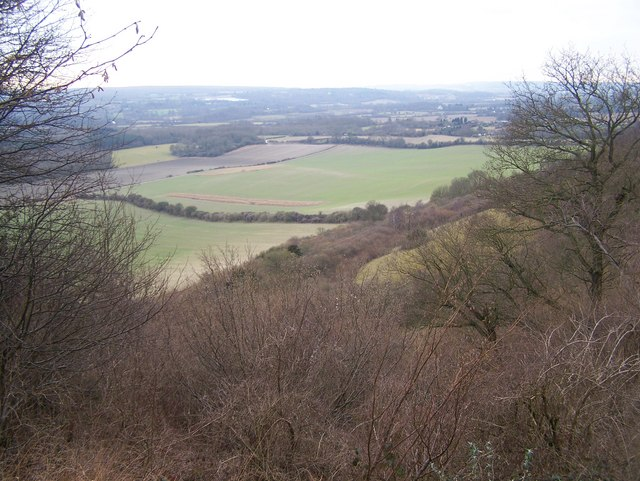 View from footpath near White Horse Wood