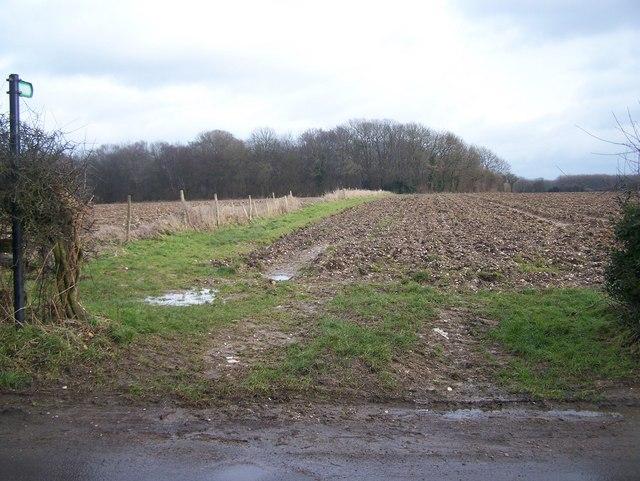 Footpath on Harvel Lane