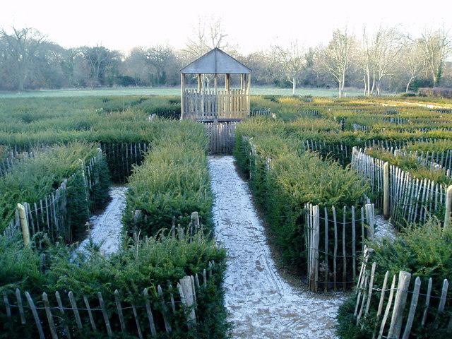 The centre of the Millennium Maze, Brent Lodge Park