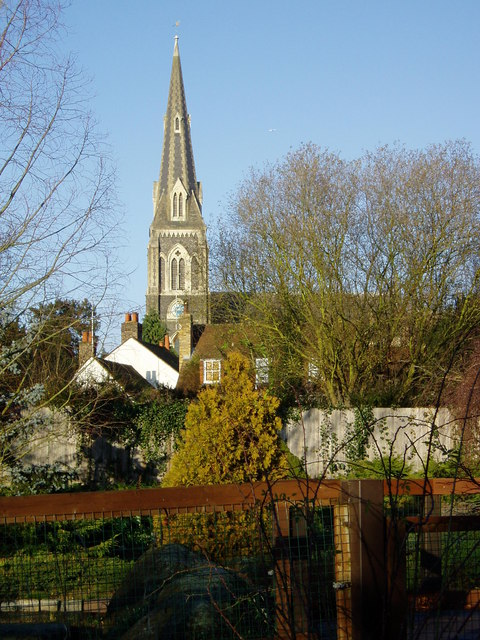 St. Mary's spire from Brent Lodge Park Zoo