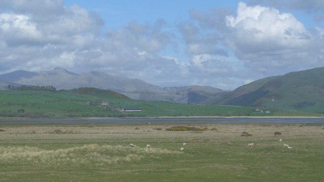 Afon Dysynni and Morfa Gwyllt