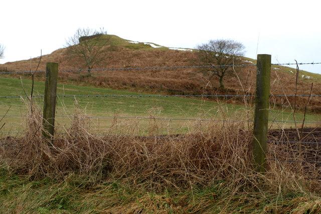 Cairn near Newlands, Kirkbuddo