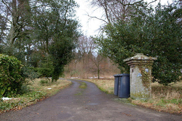 Driveway leading to Kirkbuddo House