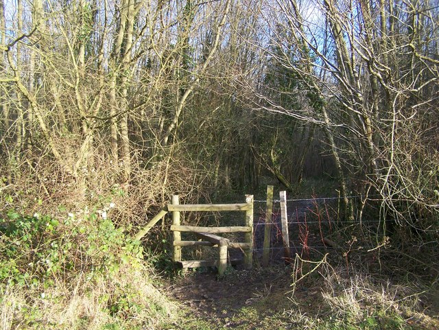 The Coldrum Trail enters Ryarsh Wood