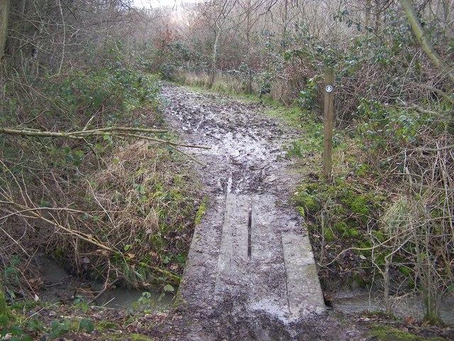 Footbridge in Ryarsh Wood