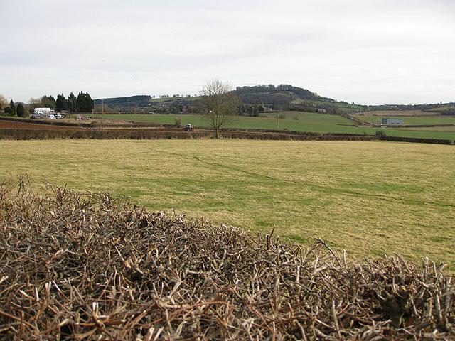 Pasture land off Grafton Lane