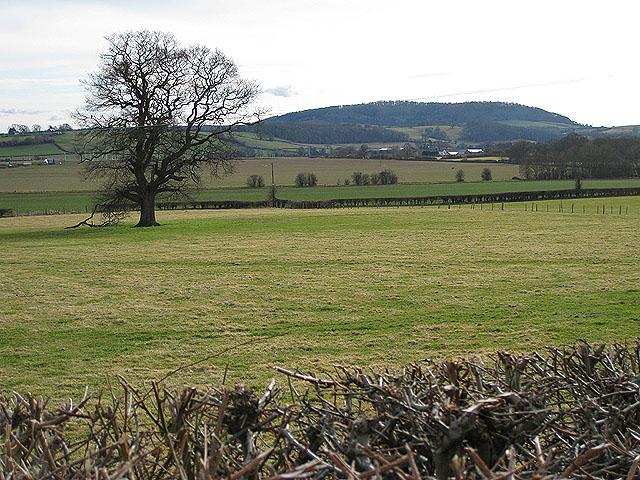 View to Aconbury Hill