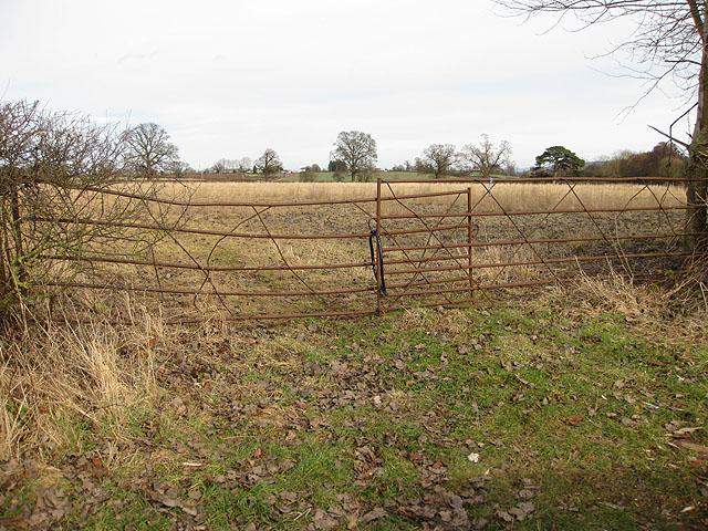 Rusty gates