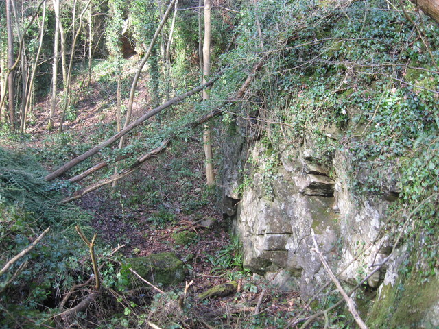 Disused Quarry in Nightingale Valley, Leigh Woods