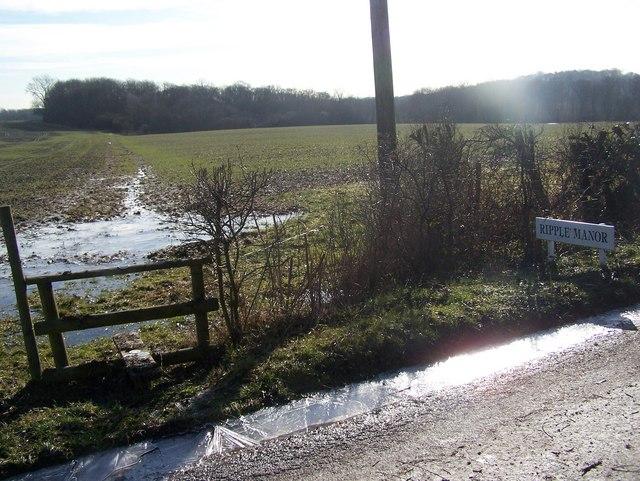 Footpath near Ripple Manor