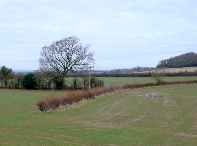 Countryside near White Lackington