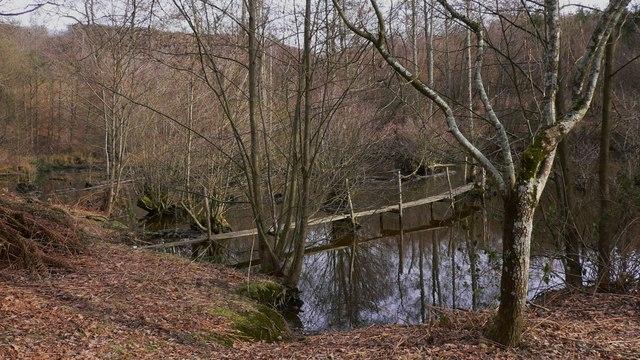 Pond with jetty