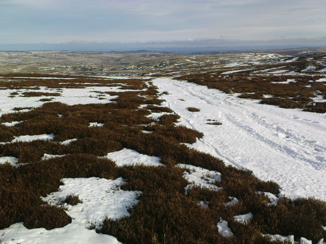Track on the Moor