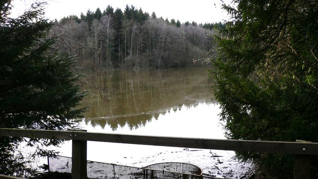 Furnace Pond in Furnace Wood