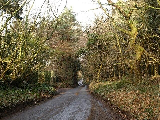 Lane past reservoir, Holcombe Down