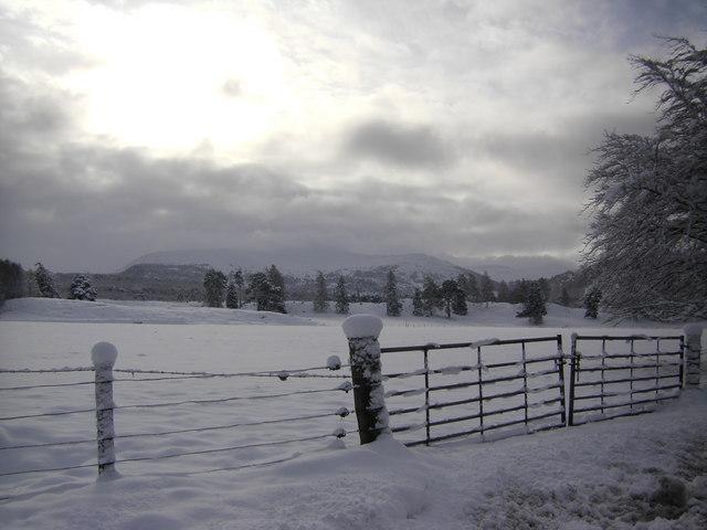 Snowy gate near Inverduie House