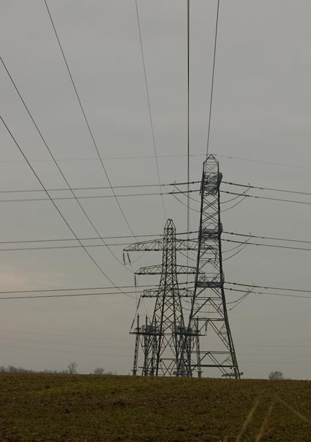 Pylons near Swine
