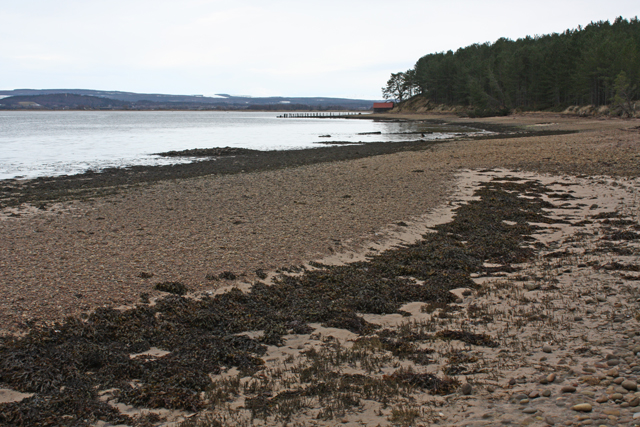 Western shore of Findhorn Bay