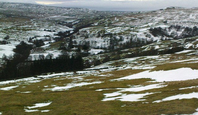 Upper Arkengarthdale from Windegg Pasture
