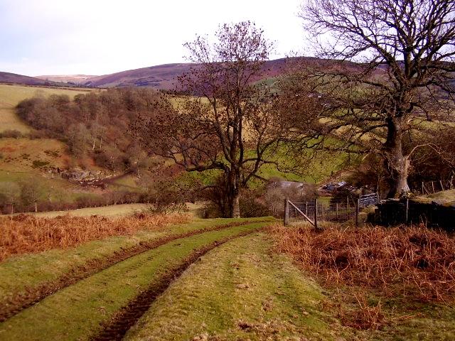 Llatho farmland